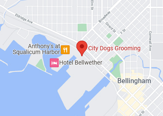 City Dogs Grooming Map