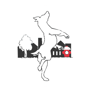 City Dogs Grooming logo